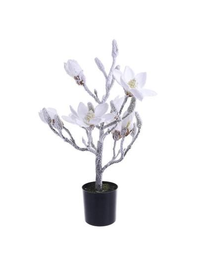 Χιονισμένo Φυτό Σε Γλάστρα 2-85-701-0003