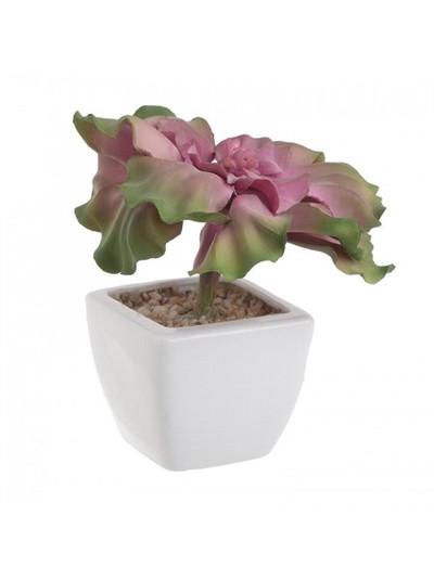 Φυτό Σε Γλάστρα INART Κωδικός: 3-85-084-0042