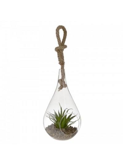 Φυτό Σε Γυάλα INART Κωδικός: 3-85-890-0006