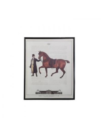 Πίνακας Brown Horse FYLLIANA Κωδικός: 373-92-035b Διαστάσεις: 40Χ50 Εκατοστά