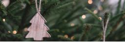 CHRISTMAS TREES (6)