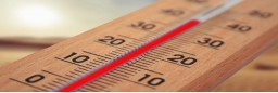 THERMOMETERS (5)